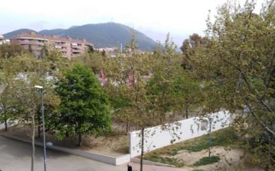 "El ""piscinasso"" del PSC-Som de Castellar"